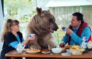 adopted-bear-russian-family-stepan-a20-e1464662041802