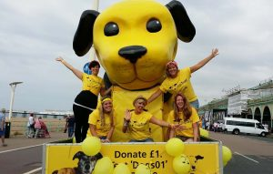 dogs-trust-dogcilla.232.full