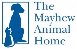 mayhew-logo-300x192